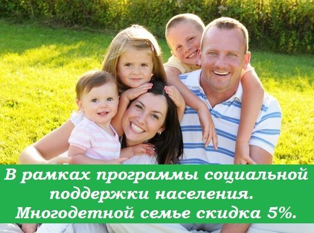 mnogodet-semya