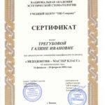 tregubova-9